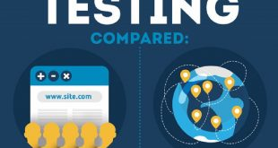 Crowd Testing Infographic Index