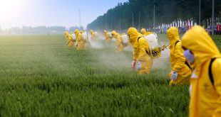 Pesticide Paradox in Software Testing